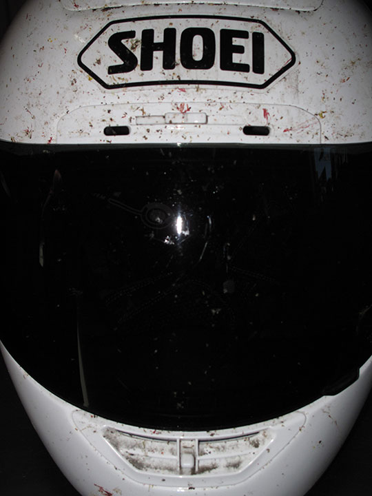 Shoei Bug Killer